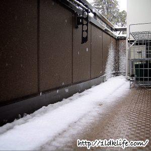 3月下旬は32年ぶりの雪のベランダ。
